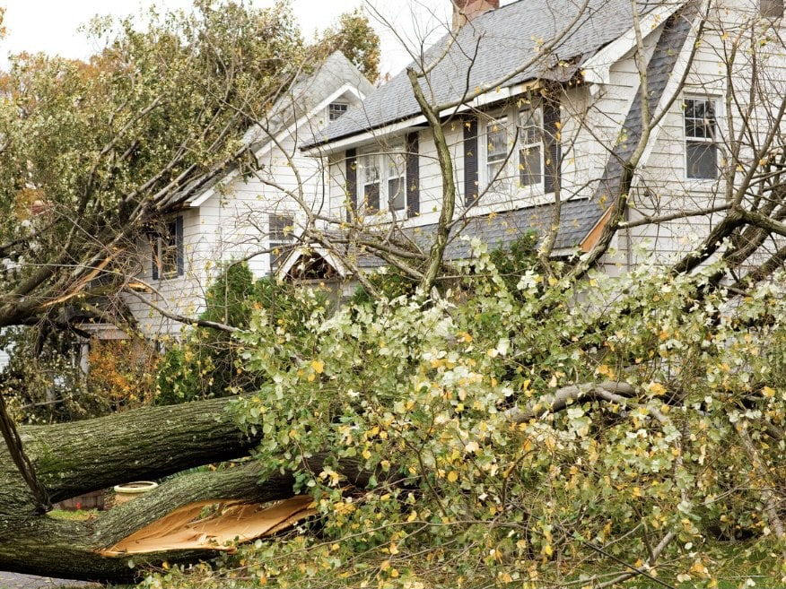 tropical storm and hurricane damage